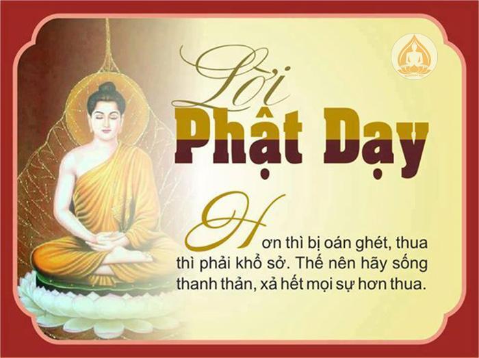 loi-phat-day-4