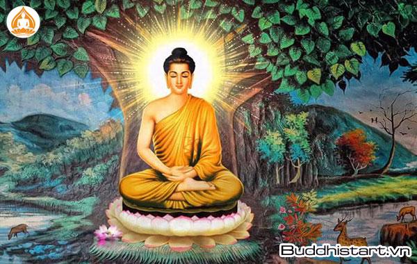 Phật, Bồ Tát là gì? Có bao nhiêu vị Phật, Bồ Tát?